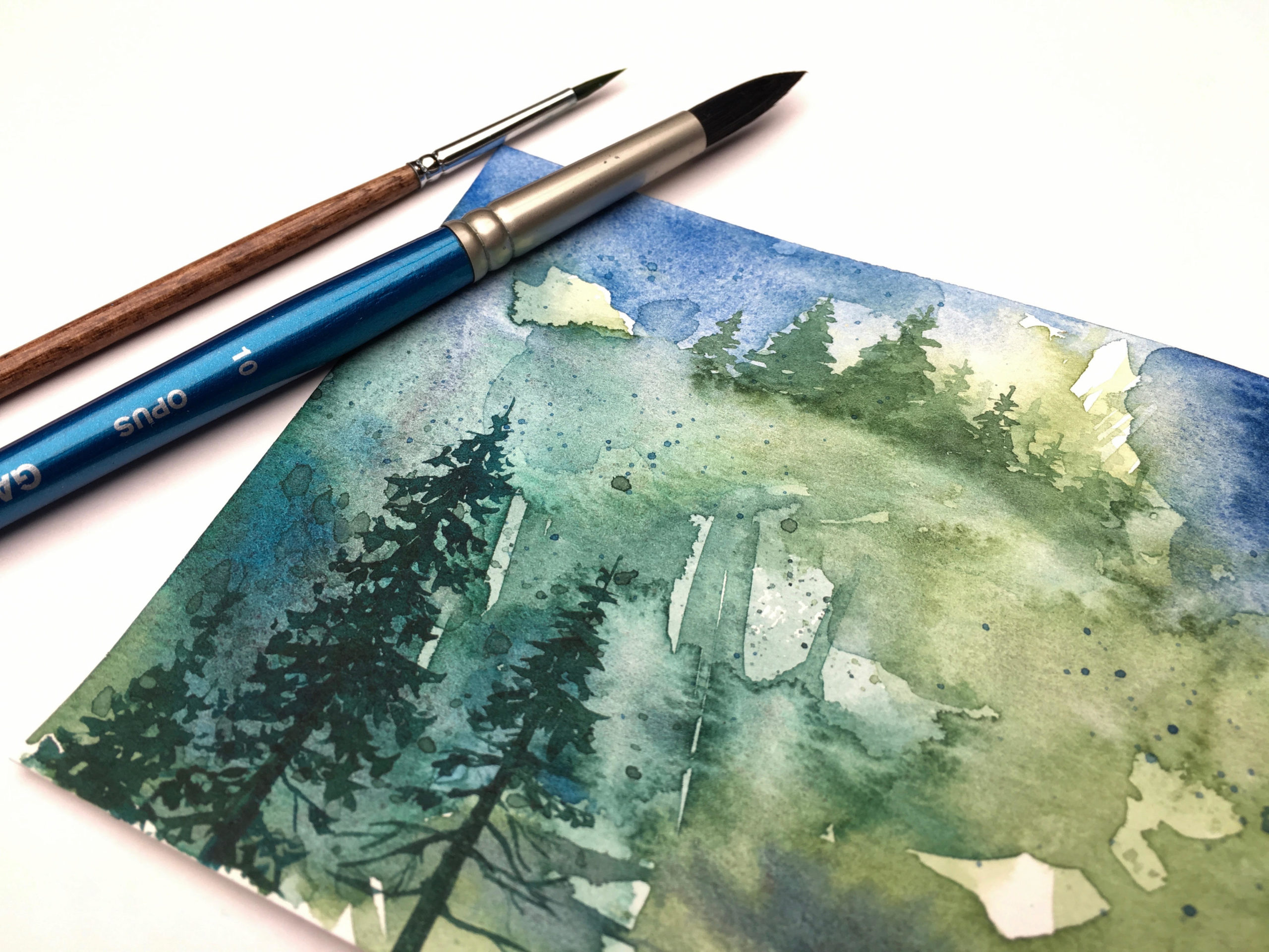 Coastal Forests in Watercolour with Nicole Warrington