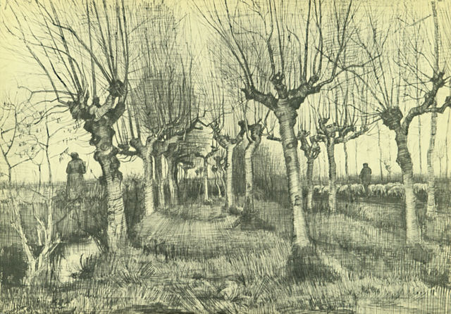Drawing 2 – Landscape Drawing – ONLINE